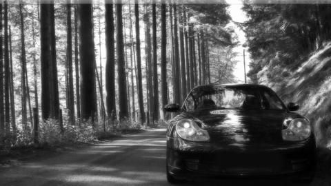 DanoS4's car