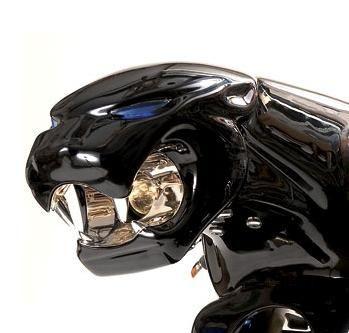 The Jaguar Bike - tn Jagbike2 L