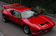 The classic Pantera