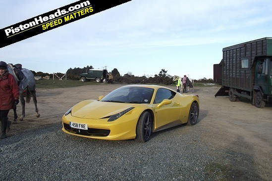 Prancing Horse shares Bodmin Moor car park space with, er, non-prancing horse