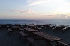 A herd of picnic tables gathers in the dusk