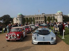 Diversity, Goodwood style