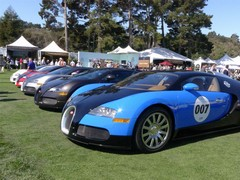 Bugatti Veyrons: common as muck
