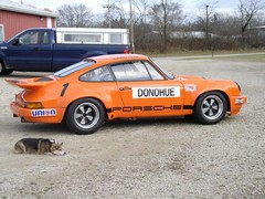 Classic 911 for sale, hound not included