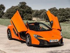 Not shy and retiring in Tarocco Orange